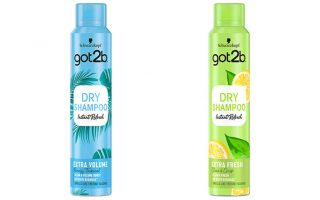 Νέα σειρά Got2b Instant Refresh Dry Shampoo για άμεσο φρεσκάρισμα στη στιγμή – Newsbeast